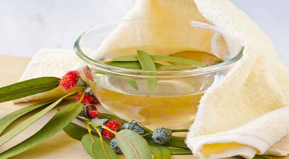 eucalyptus essential oil for sunburns