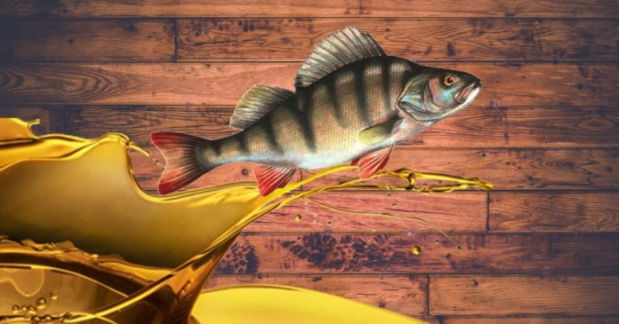 fish oil benefits for men -