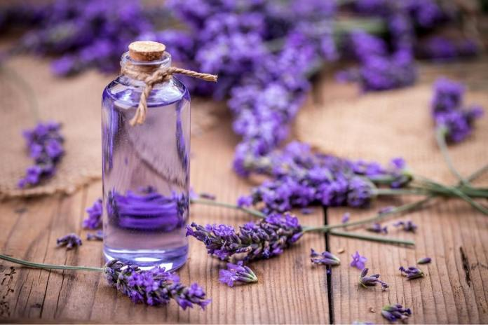 lavender oil for a sore throat