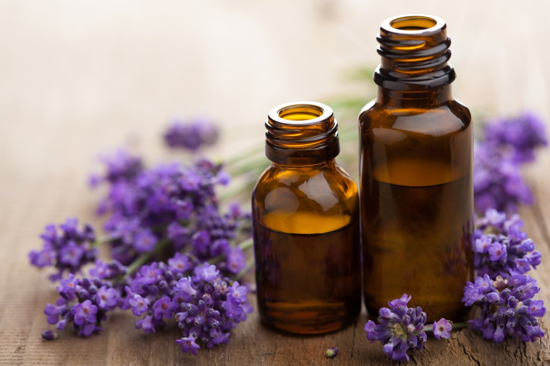 lavender oil for copd