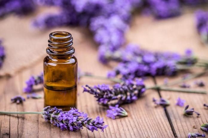 lavender oil for insomniaa