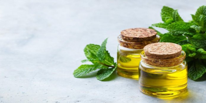 peppermint oil for candida