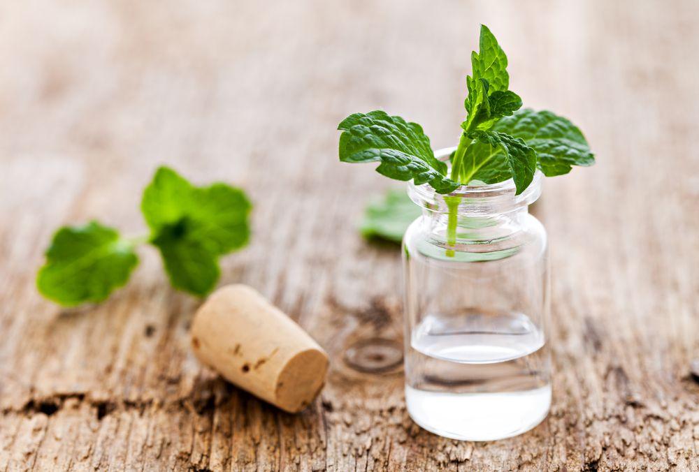 peppermint oil for strep throat