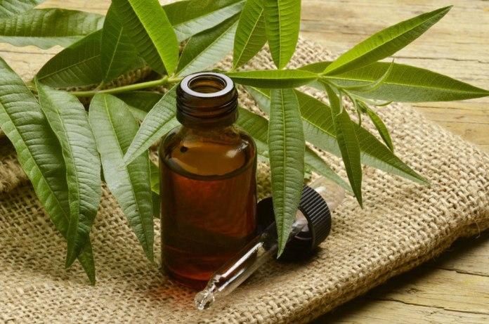 tea tree oil for diarrhoea