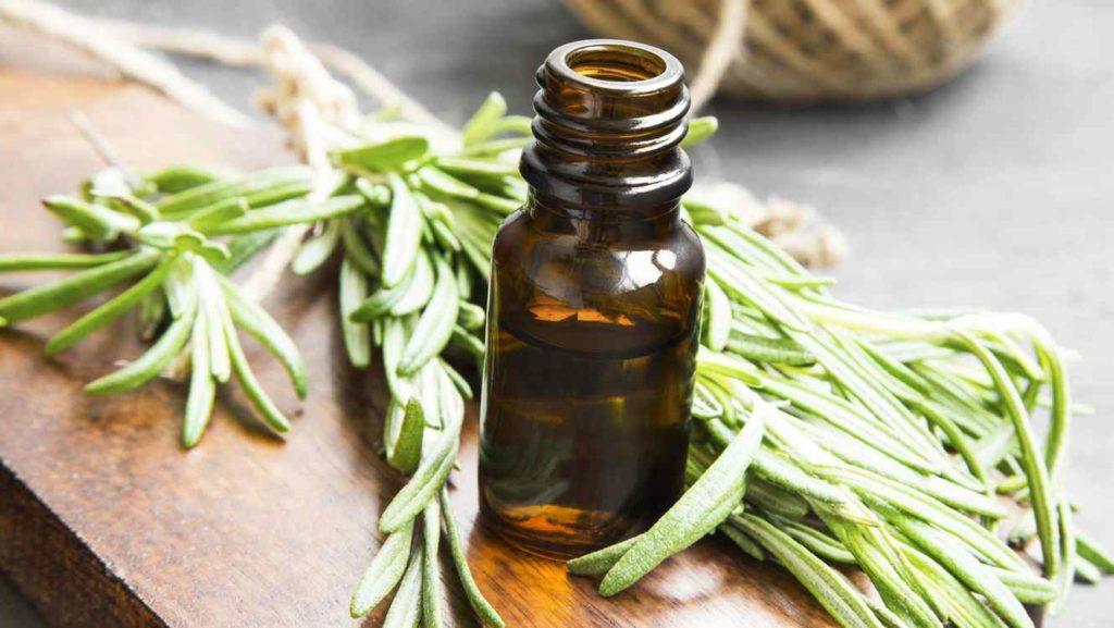 thyme oil for dandruff