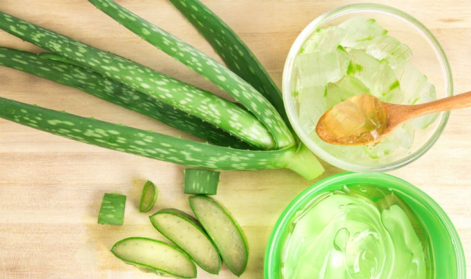 aloe vera gel for healing heat rash