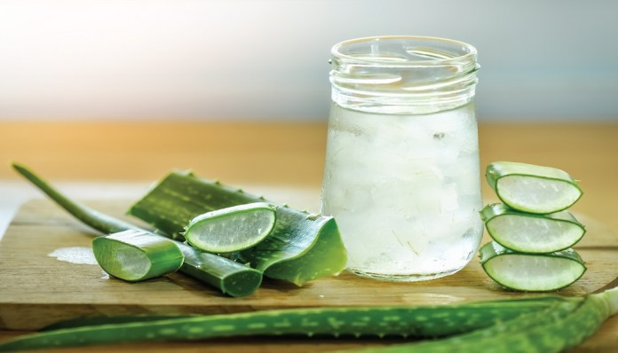 aloe vera gel for old acne scars