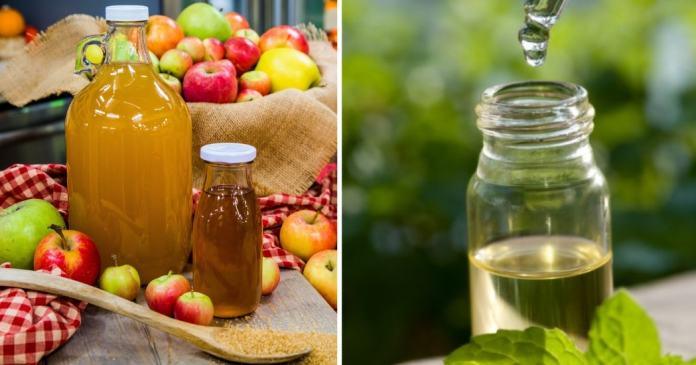 apple cider vinegar and tea tree essential oil