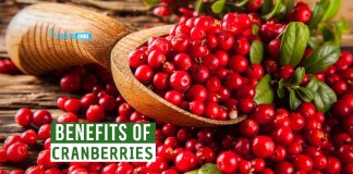 benefits of cranberries