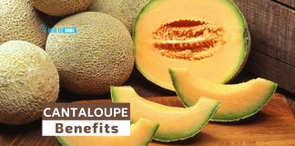 cantaloupe benefits