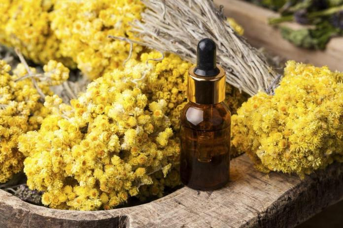 helichrysum oil for varicose veins