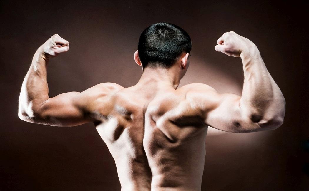 sorrel benefits to builds immunity