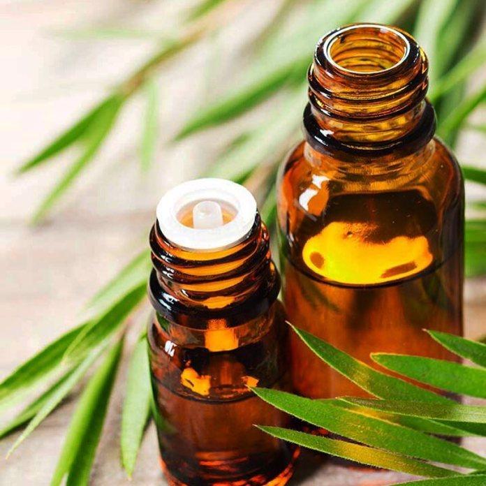 tea tree essential oil for edema
