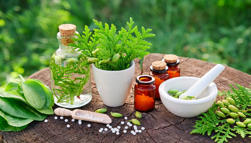 thuja herb for cure genital warts