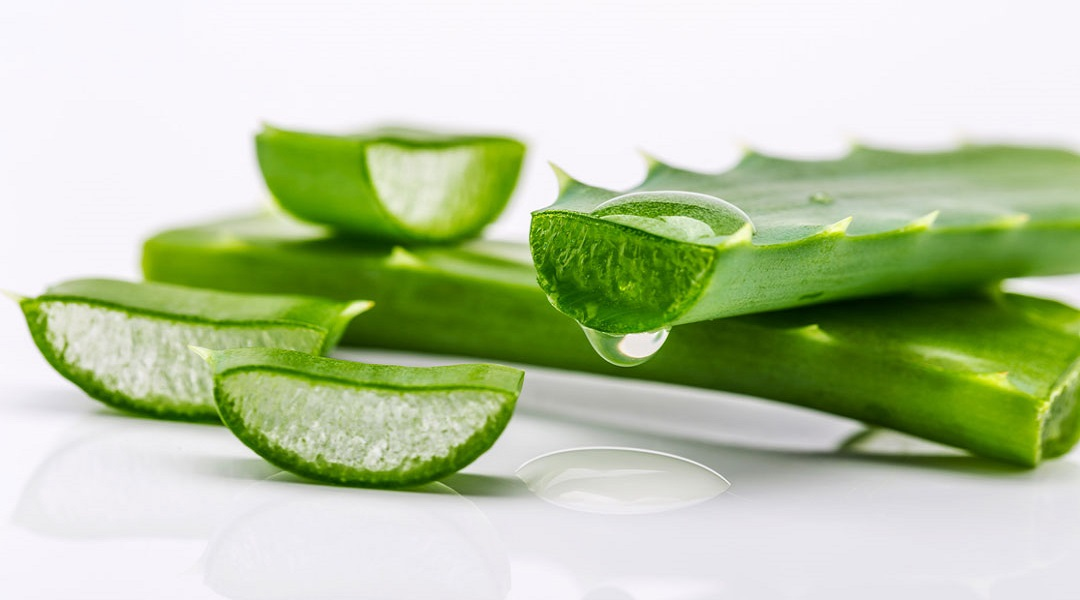 aloe vera gel to cure cyst