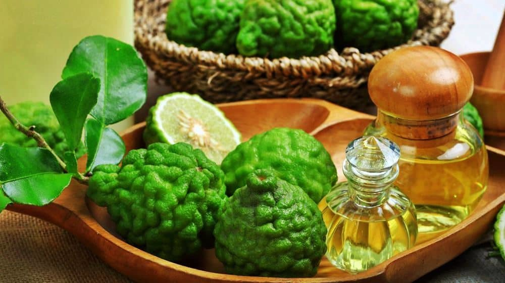 bergamot essential oil for belly fat