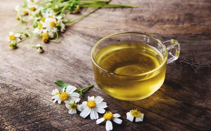 chamomile tea for treat toenail fungus