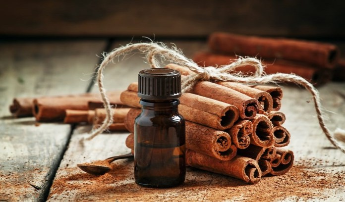 cinnamon essential oil for belly fat