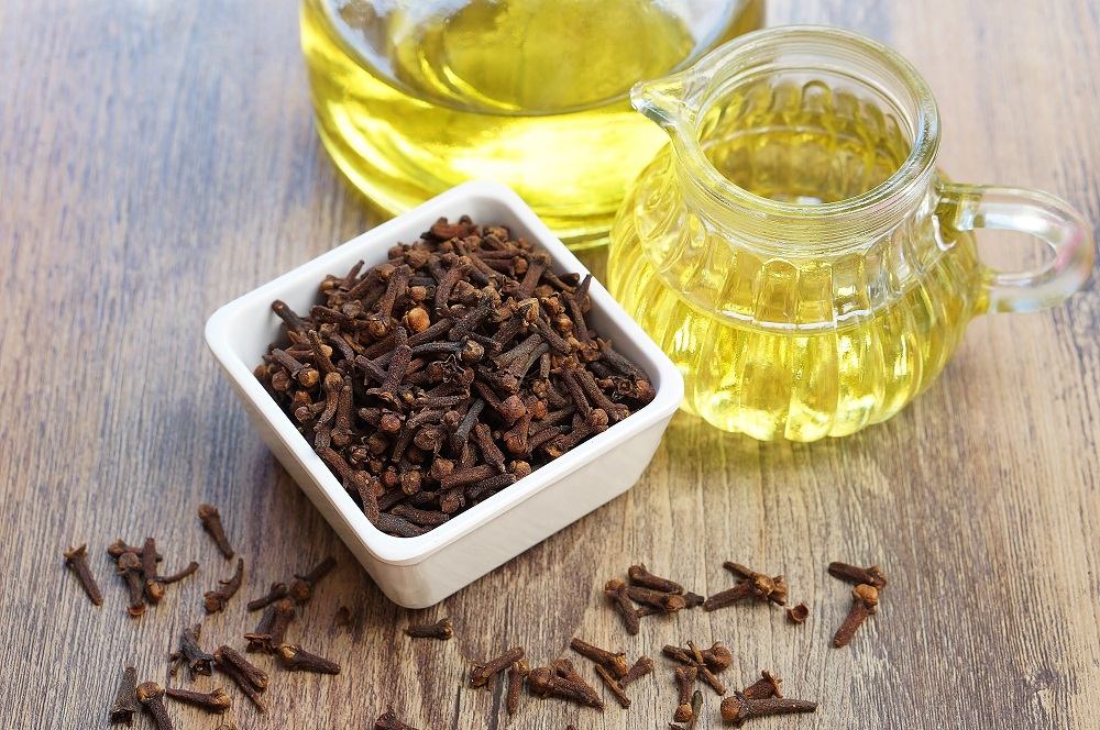 clove essential oil for the immune system