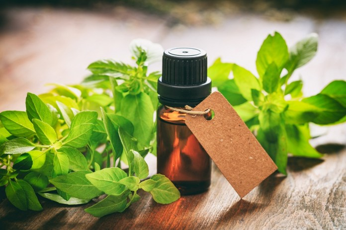 holy basil essential oil for calming