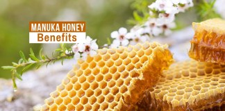 manuka honey benefits for hair tablespoon of manuka honey honey benefits