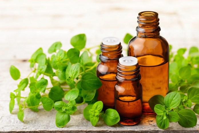 oregano essential oil for seasonal allergies
