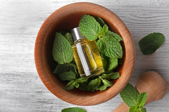 peppermint essential oil for bee string