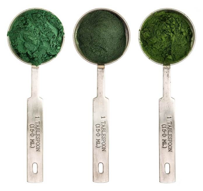 recepies of blue geen algae