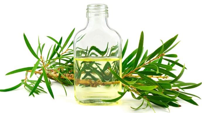 tea tree oil for dry vagina
