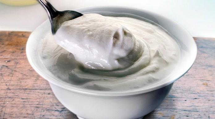 yogurt for treat yeast infection