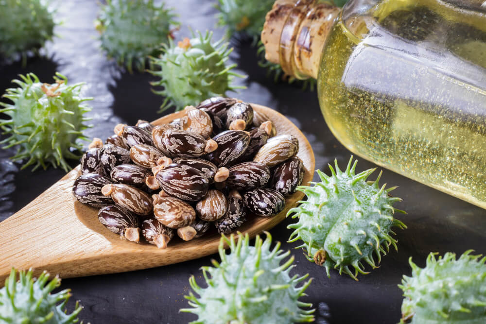 Castor Oil Uses: Health Benefits & Uses you should know