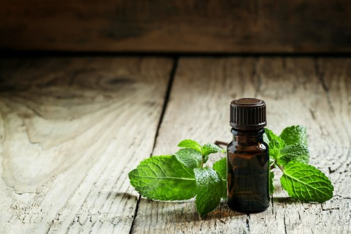 Peppermint oil-min