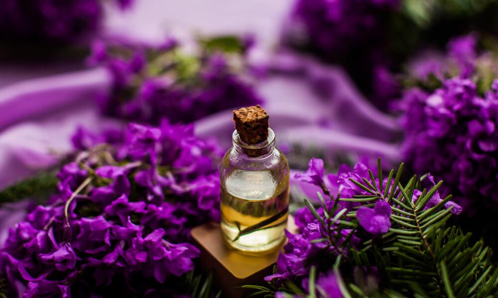 lavander essential oil