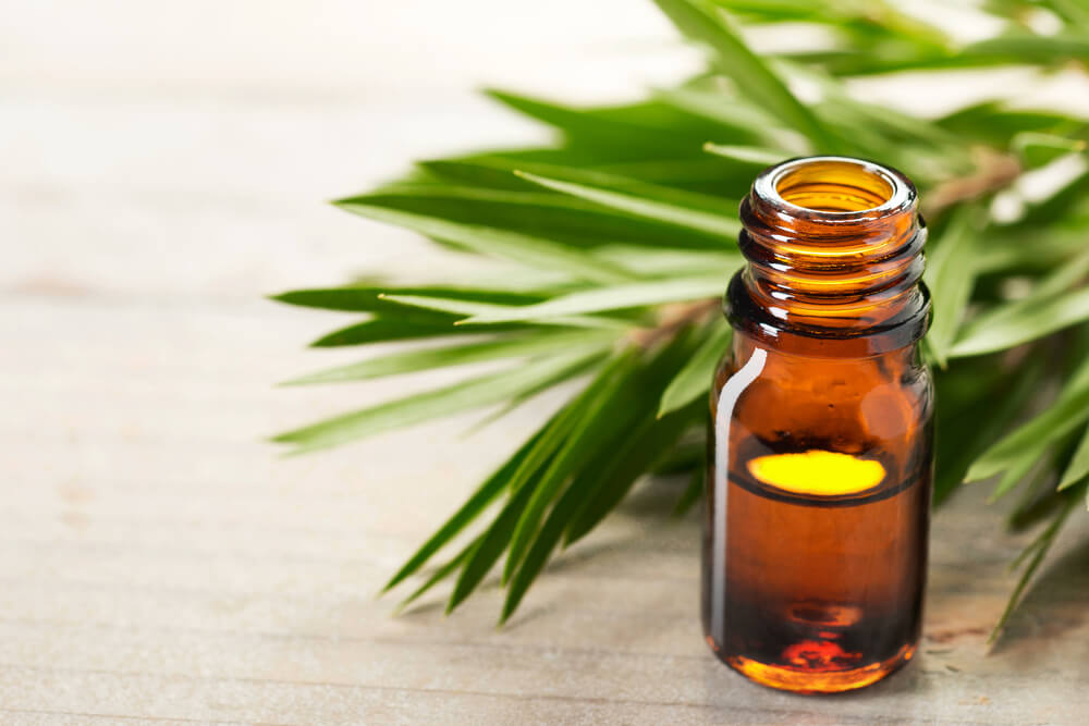 tea tree oil for impetigo