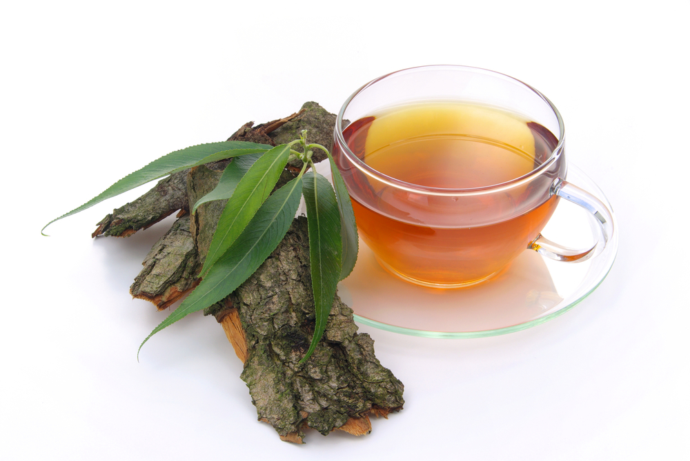 willow bark tea for tension headaches