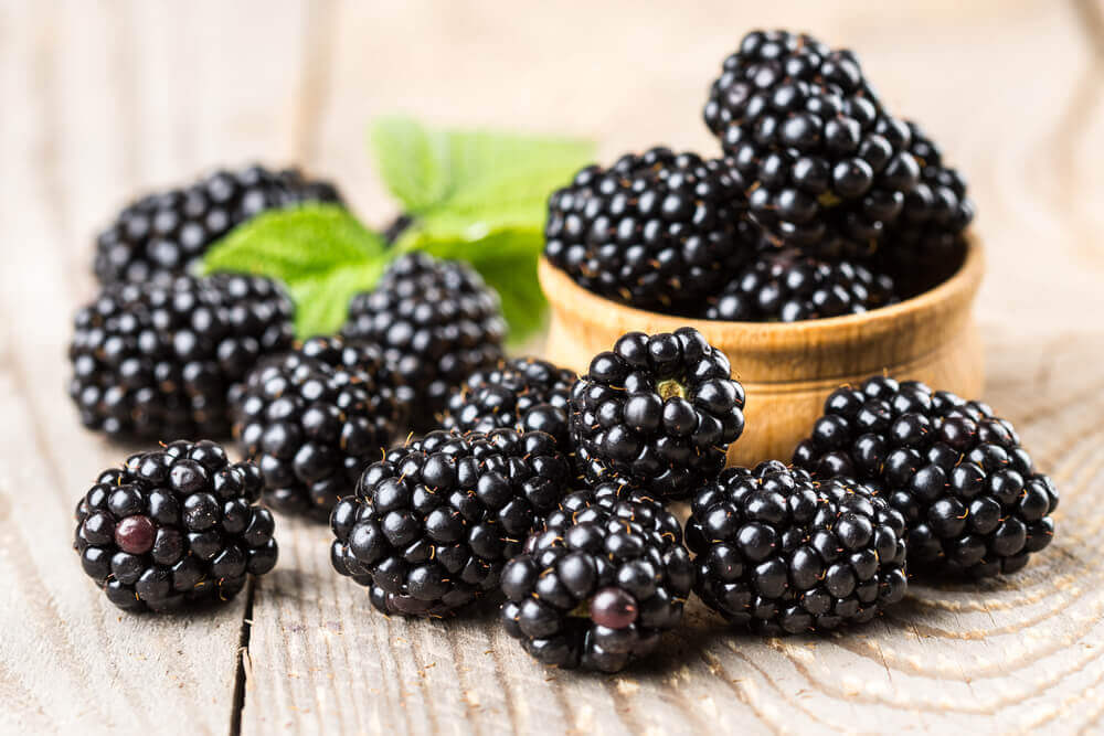Blackberries high fiber food