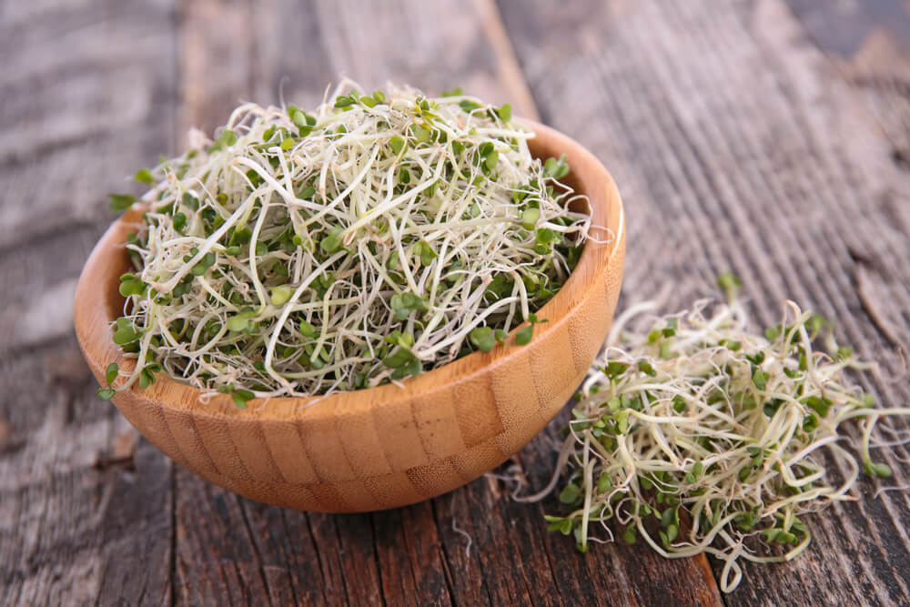 Broccoli sprouts for belly fat