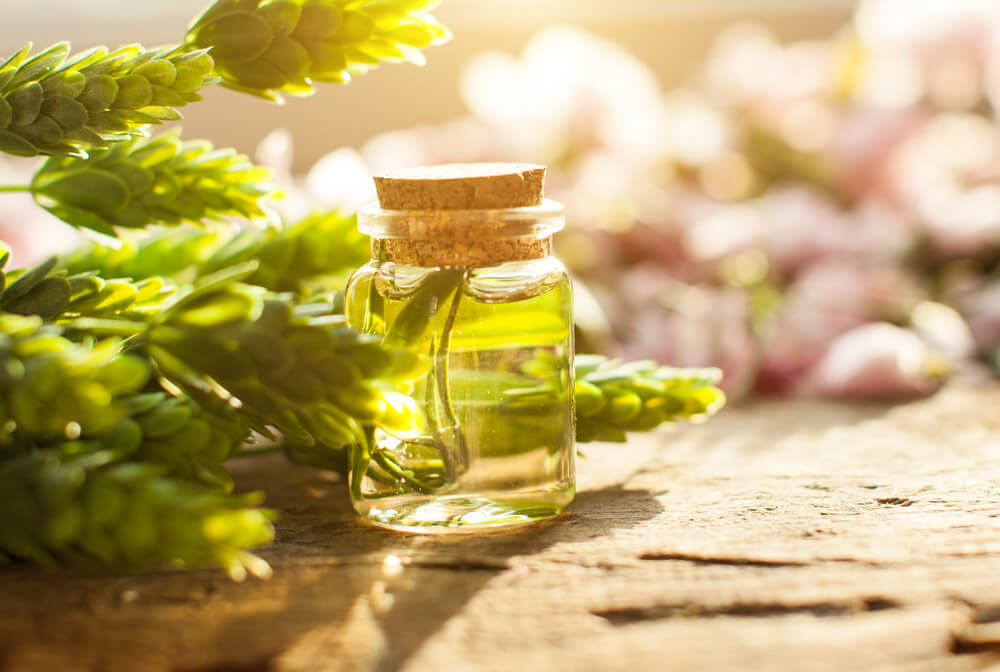 Olive Oil & Tea Tree Oil for hair