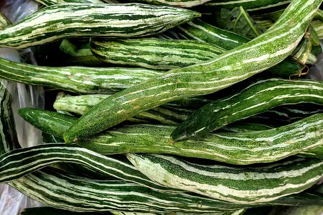 Benefits of Snake Gourd