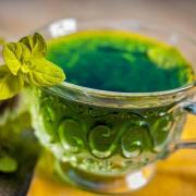 Holy Basil Tea health benefits