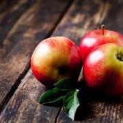 benefits of wood apple