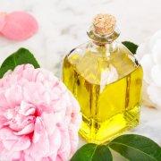camellia oil benefits