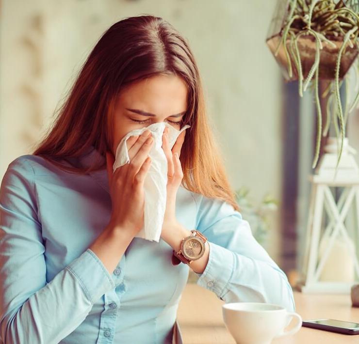 Butterbur for Allergies