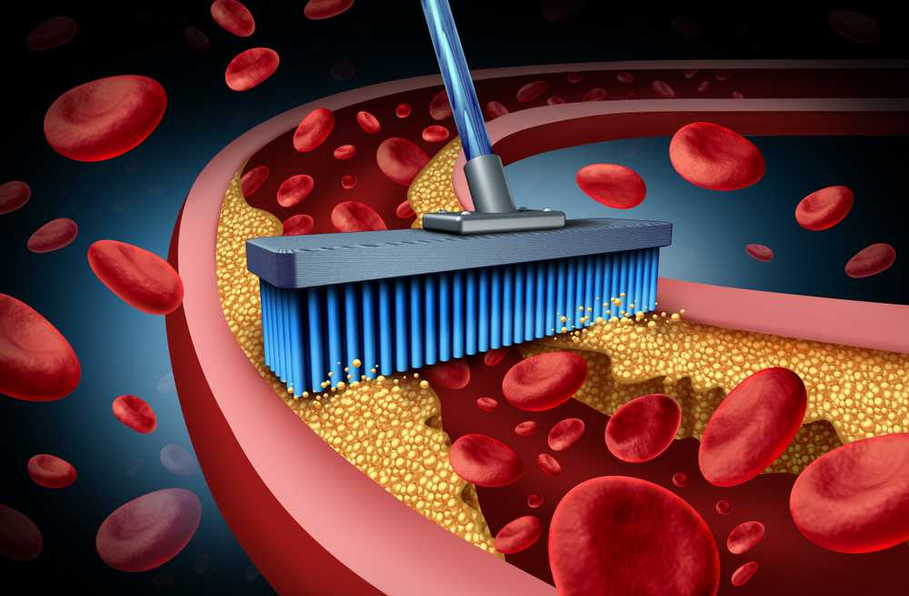 Detoxifies Blood