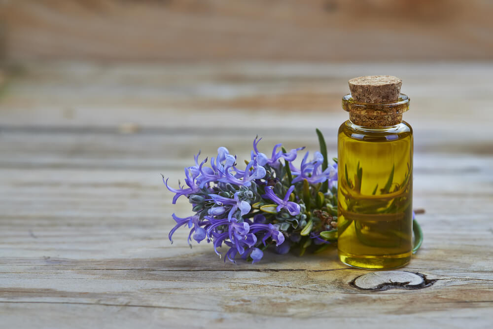 Rosemary Oil: Benefits for Hair Loss