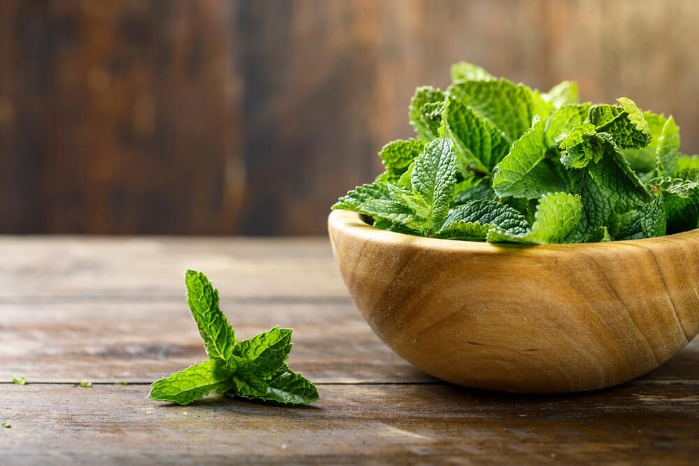 Peppermint Leaf benefits