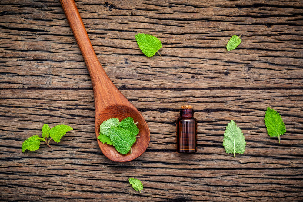 lemon balm oil - benefits