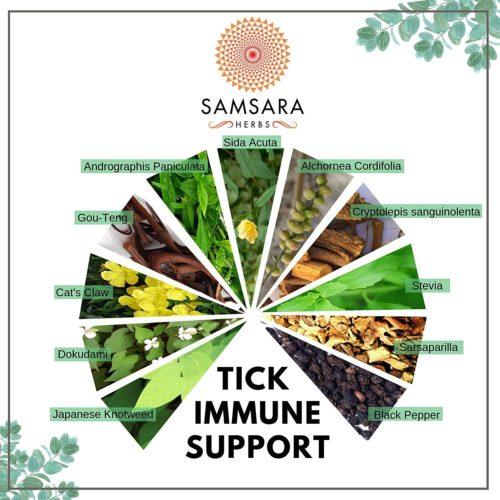 Tick Immune Support