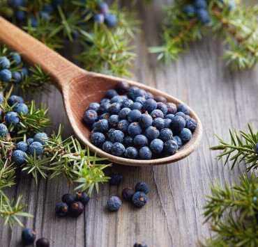 Juniper Berries