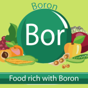 foods high in boron